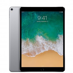 iPad Pro 10.5 256GB A1709 Wifi + Celullar Space Gray SEMINUEVO BUEN ESTADO TARA