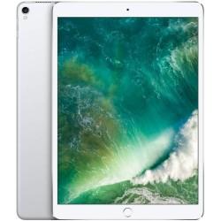 iPad Pro 10.5 256GB A1709 Silver SEMINUEVO BUEN ESTADO TARA HUELLA